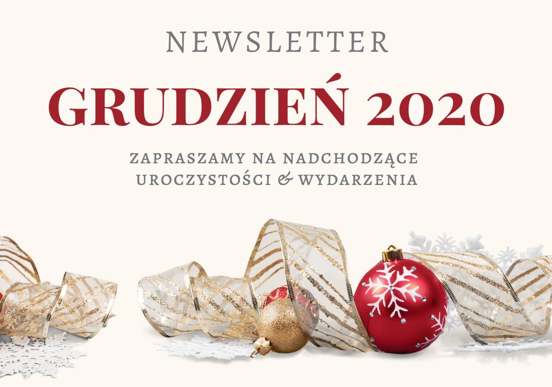Newsletter na Grudzień 2020